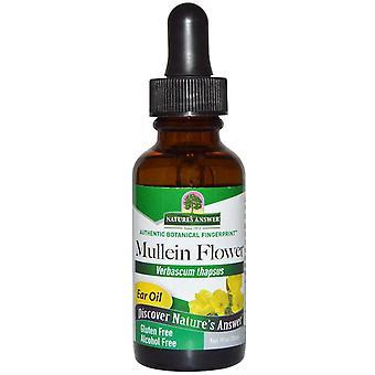 Nature's Antwort, Mullein Blume, Ohröl, Alkoholfrei, 1 fl oz (30 ml)
