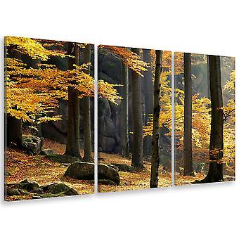 Tableau triptyque Tableau photo fontainebleau en automne - 90x60 cm