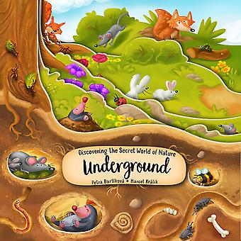 Discovering the Secret World of Nature Underground Happy Fox Books Exciting Board Book Takes Kids Ages 2 to 5 More Deeply into the Ground with Every  plus Fun and Educational Facts Peek Inside