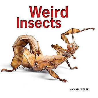 Rare insecten door Michael Worek - 9781770852341 boek