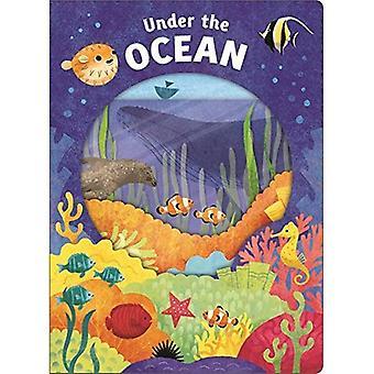 Titta närmare Under havet (titta närmare)
