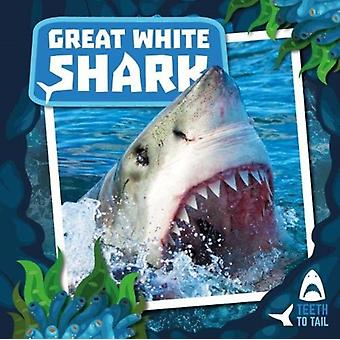 Great White Shark by Robin Twiddy