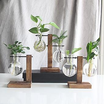 Hydroponic Desktop Plant Terrarium Planter Bulb Glass Vase - Water Planting