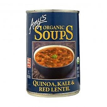 Amys - Quinoa bio Kale & soupe aux lentilles rouges