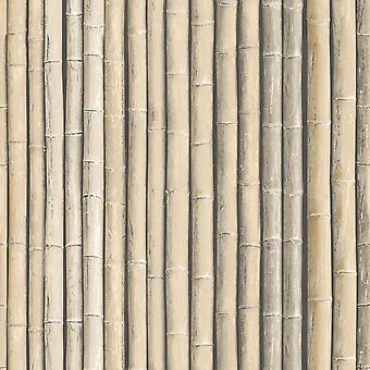 Galerie Bamboo Wallpaper