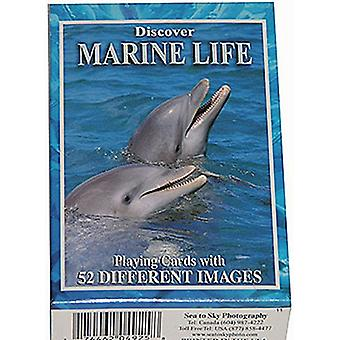 Discover Marine Life Set Of 52 Playing Cards + Jokers