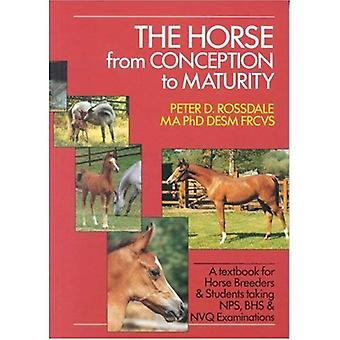 The Horse from Conception to Maturity