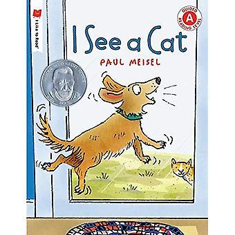 Je vois un chat (j'aime à Read(r))