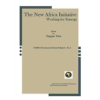 The New Africa Initiative - Working for Synergy by Tegegne Teka - 9781