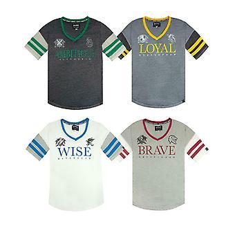 Harry Potter Galtvort House Crests Varsity Kvinner's T-skjorte Gryfinndor