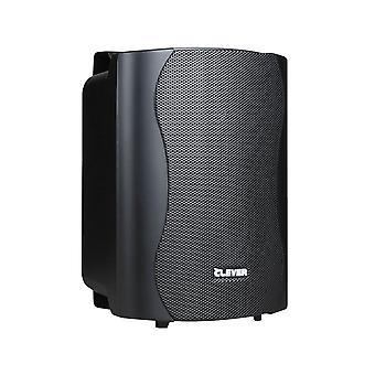 Clever Acoustics Bgs25 Black 8 Ohm Speakers (paar)
