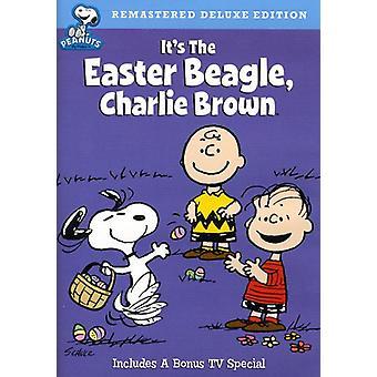 Arachides - c' est l'importation aux Etats-Unis de Pâques Beagle Charlie Brown [DVD]