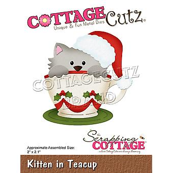 Scrapping Cottage Kitten In Teacup