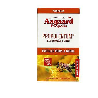 Propolentum, Echinacea, Sinkki 30 pelletit (Persikka)