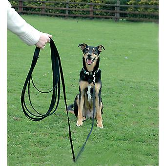 Clix by Company of Animals Long Line 10m Recall Line for Dog Training Leash