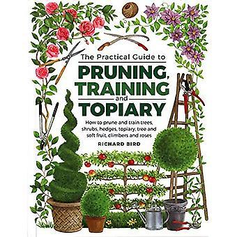Praktische gids voor snoeien, opleiding en Topiary: hoe te snoeien en trainen van bomen, struiken, heggen, Topiary, boom en zacht Fruit, klimmers en rozen