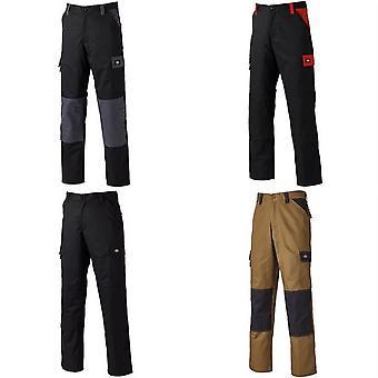 DICKIES pantalon CVC Mens Everyday