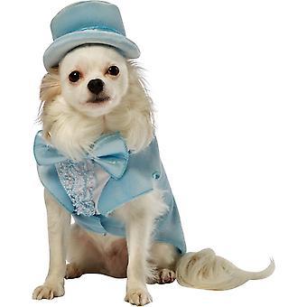 Dumb Dumber Harry Dog Costume
