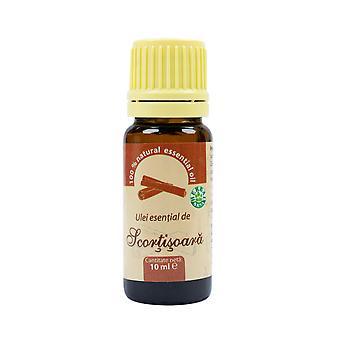 Kanel eterisk olja (Cinnamomi gryta aetheroleum) 100% ren utan tillsats 10 ml