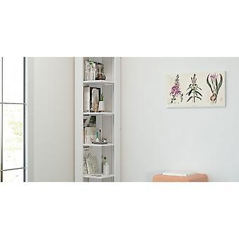 Libreria Seth Colore Bianco, in Truciolare Melaminico L34xP34xA161 cm