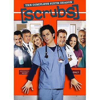 Scrubs - tuho: Kausi 6 [DVD] Yhdysvallat tuoda