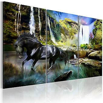 Tavla - Horse on the sky-blue waterfall background