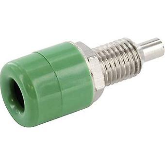 الاتصال econ جاك TB4GN المقبس المقبس، قطرها دبوس عمودي عمودي: 4 مم pc(s) الأخضر 1