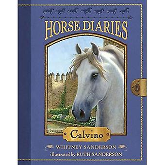 Pferd Diaries #14: Calvino