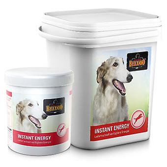 Belcando Мгновенный энергии (собаки, добавки)