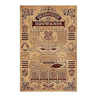Harry Potter, Affiche Maxi - Quidditch à Poudlard