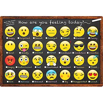 """Smart Poly Chart, 13"""" X 19"""", Emoji How Are You Feeling"""