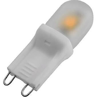 DioDor LED EØF a (en ++ - E) G9 penn 2 W = 15 W varm hvit (Ø x L) 14 x 44 mm 1 eller flere PCer