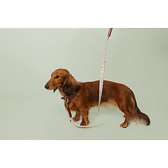 Cath Kidston Provence Rose Soft-touch Leather Dog Lead