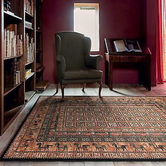 Royal Kashqai Traditional Bordered Rugs 4301 500