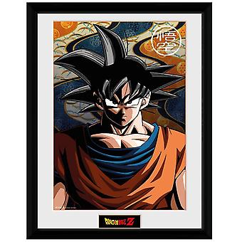 Dragon Ball Z, Plate - Goku