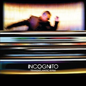 Incognito - transatlantische Rpm [CD] USA importeren