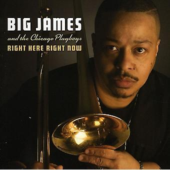 Big James & the Chicago Playboys - Right Here Right Now [CD] USA import