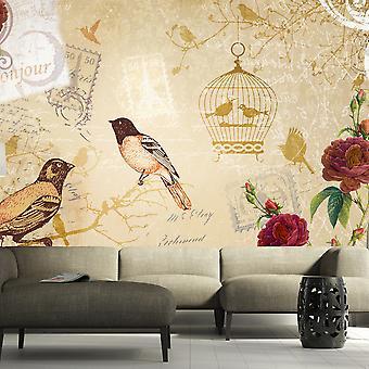Wallpaper - Bonjour