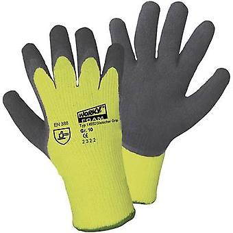 L + D Griffy gletsjer grip 14932 PAA beschermende handschoen maat (handschoenen): 10, XL EN 388, EN 511 CAT II 1 paar