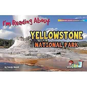 Ik ben het lezen van over het Nationaal Park Yellowstone