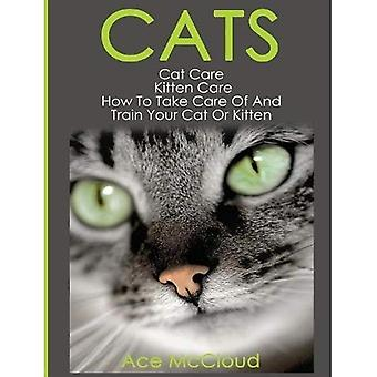 Cats: Cat Care: Kitten Care: How to Take Care of� and Train Your Cat or Kitten (Complete Guide to Cat Care & Kitten Care with Pro)