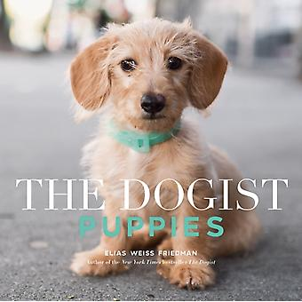 Dogist Puppies by Elias Weiss Friedman