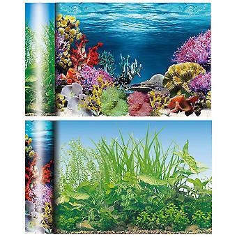 Ica Fondo dei Laghi Caraibici (Pesci , Decorazioni , Sfondi decorativi)