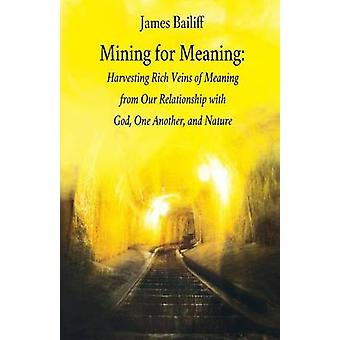 Mining for Meaning by Bailiff & James