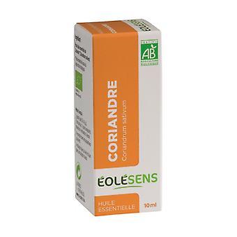 Coriander 10 ml of essential oil