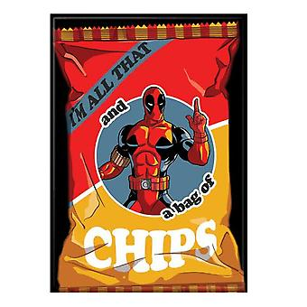 Deadpool I'm Kaikki se ja pussi sirumagneettia