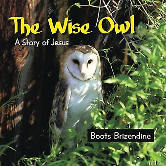 The Wise Owl - A Story of Jesus by Boots Brizendine - 9781490891750 Bo