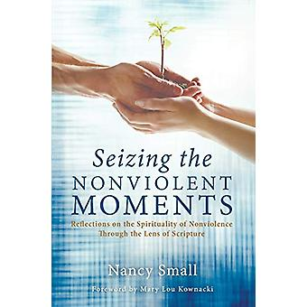 Seizing the Nonviolent Moments by Nancy Small - 9781625647566 Book