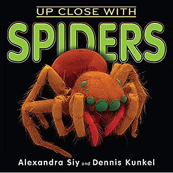 Près avec araignées