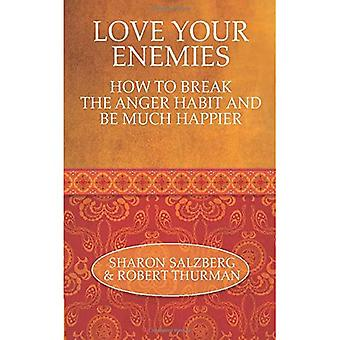 Love Your Enemies: How to Break the Anger Habit and Be Much Happier